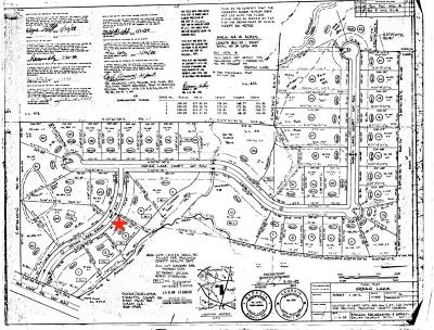 Paulding County Residential Lots & Land For Sale: 104 Indian Lake Drive