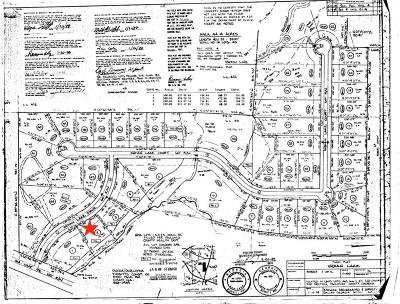 Paulding County Residential Lots & Land For Sale: 80 Indian Lake Drive