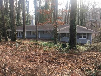 Stone Mountain Single Family Home For Sale: 519 Susan Creek Drive
