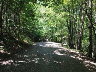 Jasper Residential Lots & Land For Sale: 3 Lots Mount Sequoyah