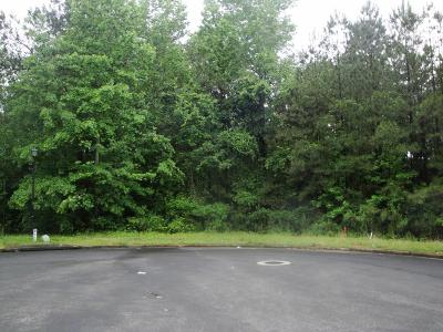 Residential Lots & Land For Sale: 3935 Rajean Drive