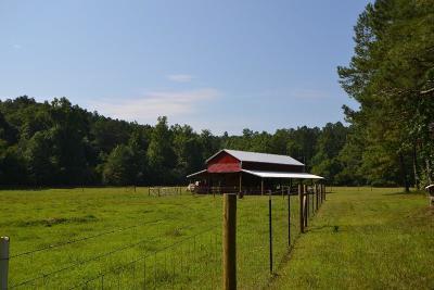 Jasper Land/Farm For Sale: 3075 Upper Bethany Road