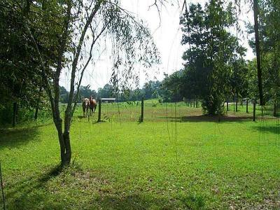 Canton Land/Farm For Sale: 547 Collett Drive