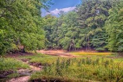 Buford Residential Lots & Land For Sale: 5985 Lanier Heights Circle