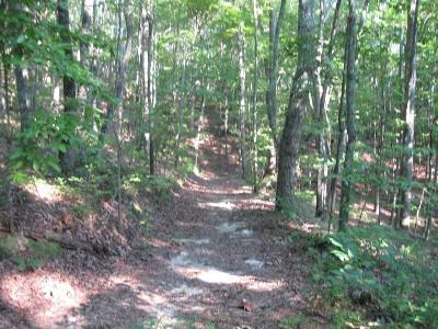 Talking Rock Residential Lots & Land For Sale: Old Federal Road