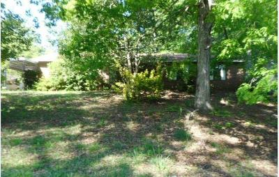 Henry County Single Family Home For Sale: 100 Richard Way