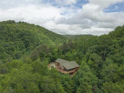 Rabun County Single Family Home For Sale: 293 Green Bower