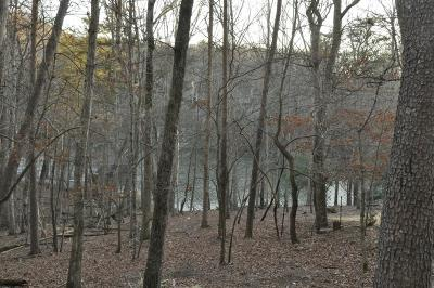 Bent Tree Residential Lots & Land For Sale: Lakeview Trace