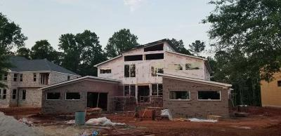 Stone Mountain Single Family Home For Sale: 920 Old Tucker Road