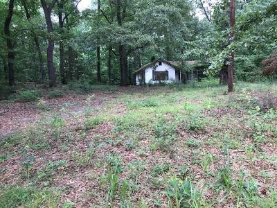 Decatur Single Family Home For Sale: 2080 Tilson Road