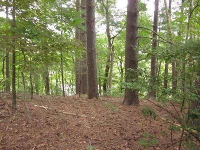 Bent Tree Residential Lots & Land For Sale: 629 Blue Pine Court