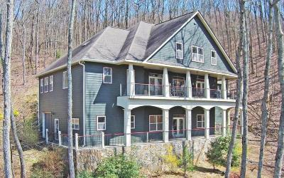 Ellijay Single Family Home For Sale: 385 St Andrews Drive