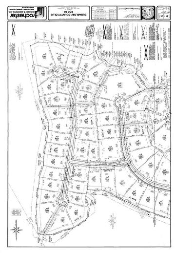 Duluth Residential Lots & Land For Sale: 2825 Eudora Trail