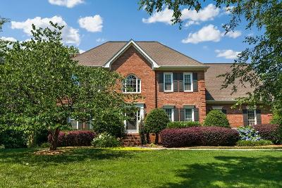 Marietta Single Family Home For Sale: 753 Sharp Mountain Creek