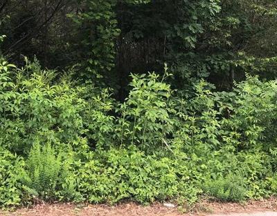 Carroll County Residential Lots & Land For Sale: 524 Earnest Lane