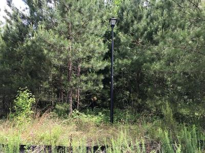 Carroll County Residential Lots & Land For Sale: 308 Sequoia Pointe