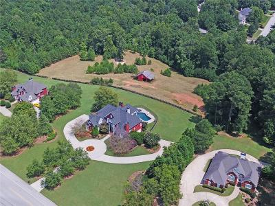 Buford Single Family Home For Sale: 5879 Shadburn Ferry Road