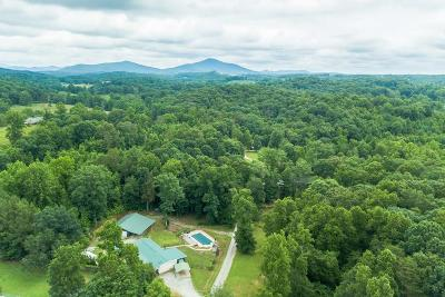 Lumpkin County Single Family Home For Sale: 45 Chili Way