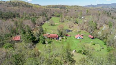 Fannin County, Gilmer County Single Family Home For Sale: 1261 Black Ankle Creek Road