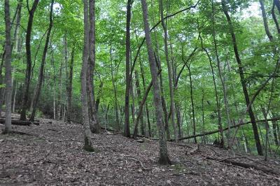 Big Canoe Residential Lots & Land For Sale: 1168 Quail Cove Drive