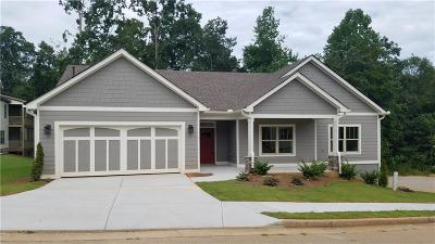 Conyers Single Family Home For Sale: 1411 Arabian Court NW