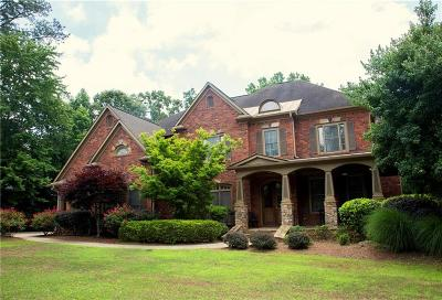 Canton Single Family Home For Sale: 1028 Windsor Green Drive