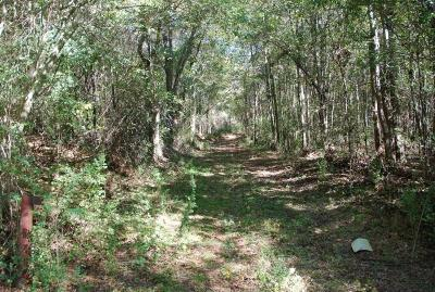 Land/Farm For Sale: Old State Road