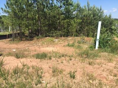Dallas Residential Lots & Land For Sale: 28 Crescent Commons Drive