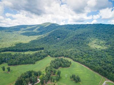 Jasper Residential Lots & Land For Sale: 1425 Oglethorpe Mountain Road
