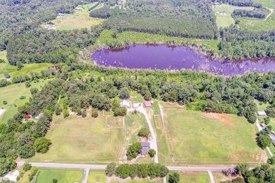 Floyd County, Polk County Single Family Home For Sale: 231 Wiseman Road