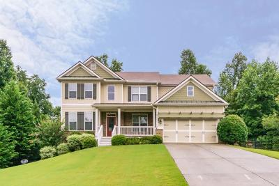 Dawsonville Single Family Home For Sale: 247 Dawson Manor Drive