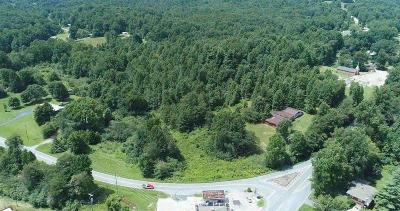 Lumpkin County Commercial For Sale: 4237 Highway 19 Highway N