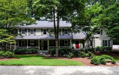 Suwanee Single Family Home For Sale: 977 Mill Creek Run