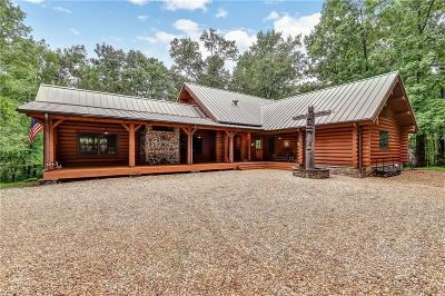 Marietta Single Family Home For Sale: 1113 Burnt Hickory Road NW