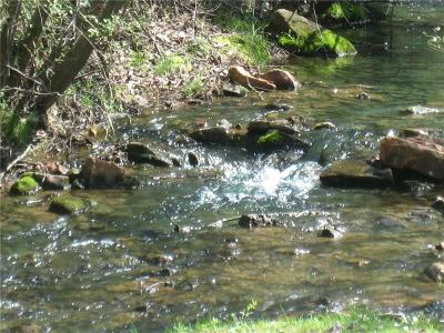 Bent Tree Residential Lots & Land For Sale: 1108 Oglethorpe Mountain