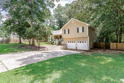 Acworth Single Family Home For Sale: 5307 Ferry Creek Lane
