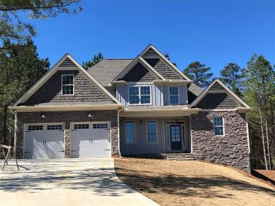 Cartersville Single Family Home For Sale: 14 Jamilee Cove