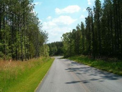 Residential Lots & Land For Sale: Raccoon Trail