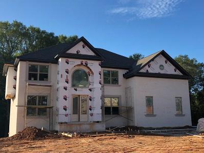 Ellenwood Single Family Home For Sale: 113 Kalsum Trail