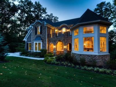 Alpharetta Single Family Home For Sale: 703 Founders Drive