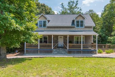 Ellijay Single Family Home For Sale: 1201 Shenendoa Drive