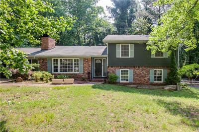 Stone Mountain Single Family Home For Sale: 613 Rays Road