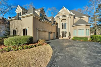 Newnan Single Family Home For Sale: 150 Highlands Point