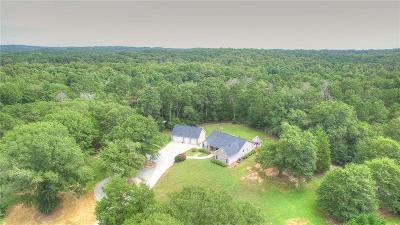 Loganville Single Family Home For Sale: 5300 Haynes Creek Drive