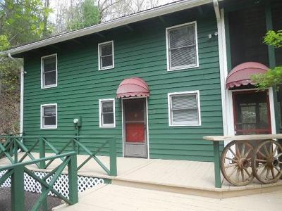 Rabun County Single Family Home For Sale: 302 Finch Drive