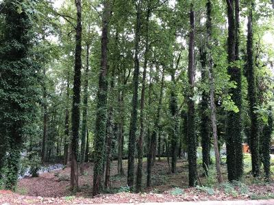 Marietta Residential Lots & Land For Sale: 2931 Foothill Trail NE