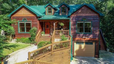Ellijay Single Family Home For Sale: 91 Spindrift Court