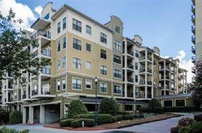 Sandy Springs Condo/Townhouse For Sale: 799 Hammond Drive #323