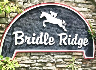 Canton Single Family Home For Sale: 200 Bridle Ridge Road