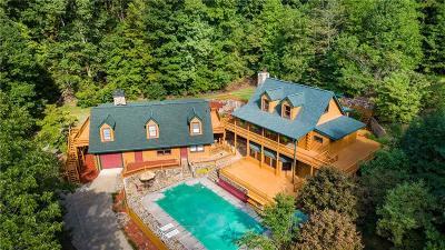 Pickens County Single Family Home For Sale: 606 Talking Rock Falls NE